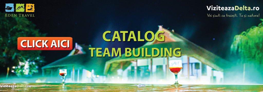 Catalog Team Building