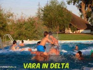 vara_in_delta_V1