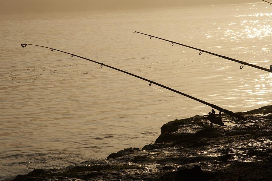 Pescuit in Dunavat
