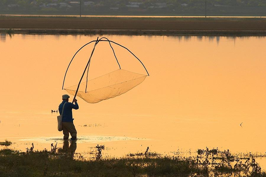 Pescuit la plasa in Delta Dunarii