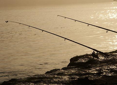 Fishing in Danube Delta - 8 days 7 nights