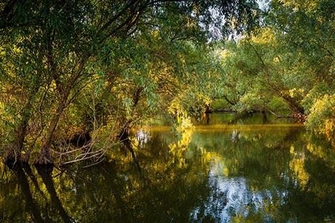 Excursie pe canale
