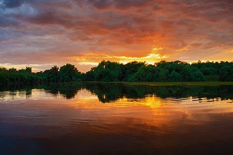 Alege excursii Delta Dunarii in cele mai frumoase zone